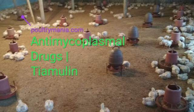 Tiamulin for poultry