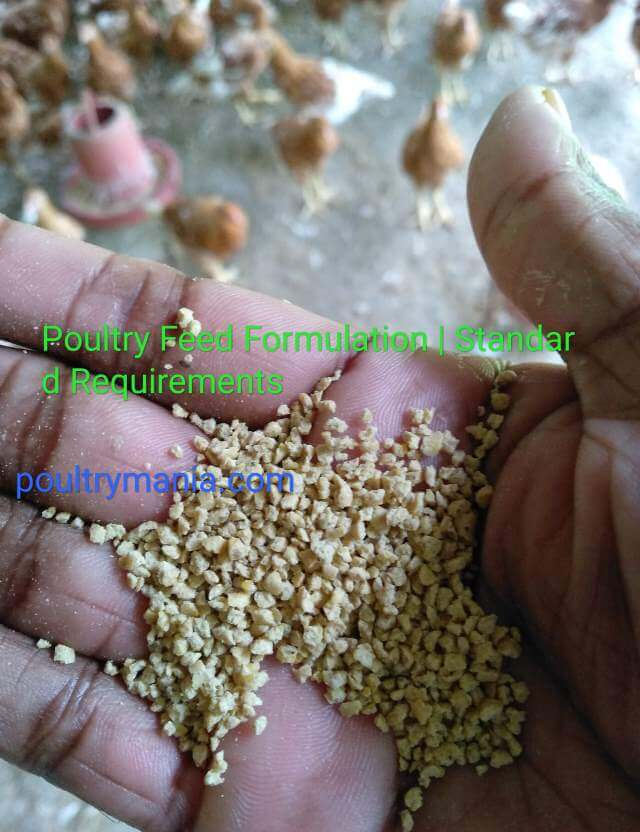 Feed formulation | Standard Requirements