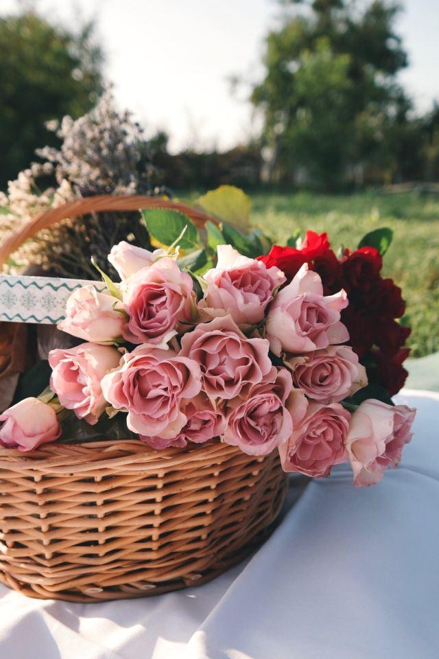 Panier de roses, brassées de gratitude