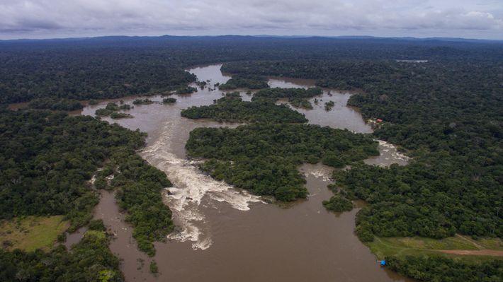 As Poucas áreas De Matas Ciliares Intactas Na Floresta Amazônica, Pertencem A Pousada Rio Roosevelt.