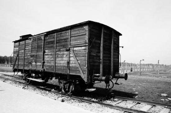 Stočni vagon korišten za prijevoz logoraša ispred Auschwitza II