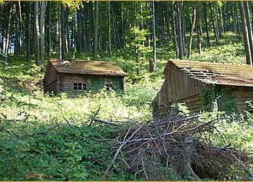 Ljeto 2008.: Spomen bolnica Gabrinovec prije obnove (pogled s puta)
