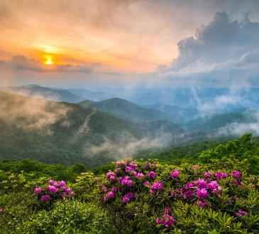 North Carolina Blue Ridge Parkway Spring Appalachian Mountains, photo by Dave Allen