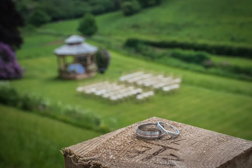 Wedding rings at Pashcoe House in Devon