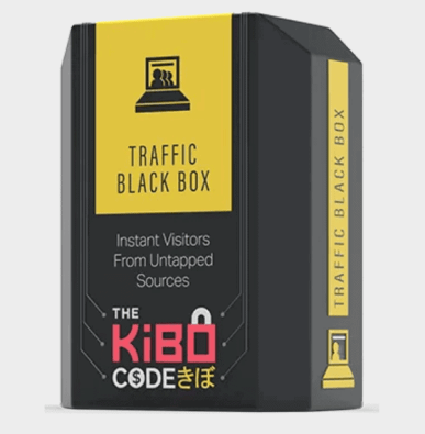 Traffic Black Box