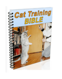 Bonus #1 Cat Training Bible-Cat Spraying No More Reviews