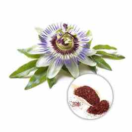 Passionflower Flower Extract