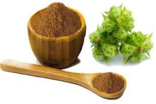Fruit Extract of Tribulus Terrestris