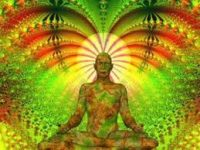 http://www.talkingdrugs.org/ayahuasca-in-search-of-a-legal-psychedelic-epiphany