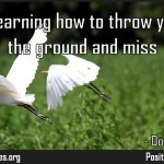 Flying is learning how to throw yourself at the ground and miss