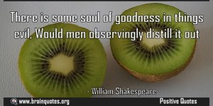There is some soul of goodness in things evil Would men observingly distill