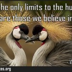 Perhaps the only limits to the human mind are those we believe in