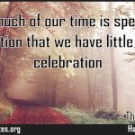 So much of our time is spent in cerebration that we have little time for celebration