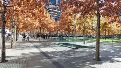Much needed open space in lower Manhattan. Gary Hack