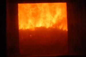 DSC 1719 Stuttgart Munster Mullverbrennung 20130603