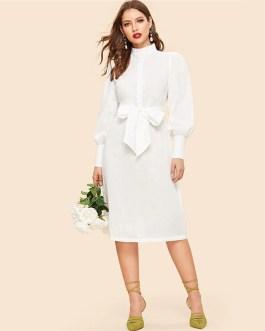 Bishop Sleeve Half Placket Belted Stand Collar Knee Length Dress