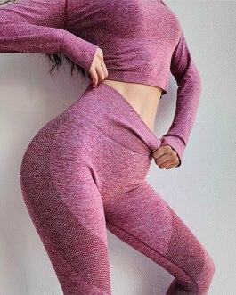 Seamless Tummy Control Fitness Leggings