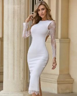 Sexy Lace Long Sleeve Backless Celebrity Club Party Vestidos Bandage Dress