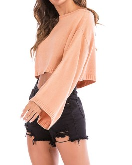 Pullover Bateau Neck Long Sleeves Acrylic Crop Sweaters