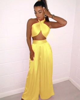 Modern Solid Backless Crop Top And Pant Set