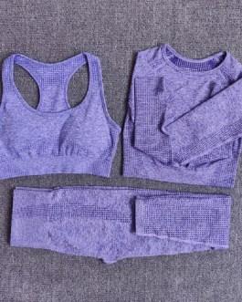3Pcs Fitness Yoga Workout Sportswear Suits
