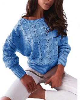 Hollow Out Batwing Sleeve Off Shoulder Knitted Top Sweater