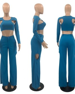 Trouser Suits Cropped Top and Wide Leg Pants Sets