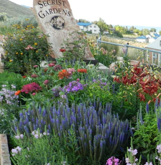 Full sun perennials for high mountain gardens powerful perennials full sun perennials mightylinksfo