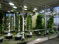 The Science Of Grow Lamps | PowerHouse Growers