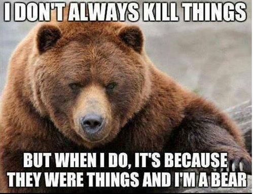 Bear Kills copy