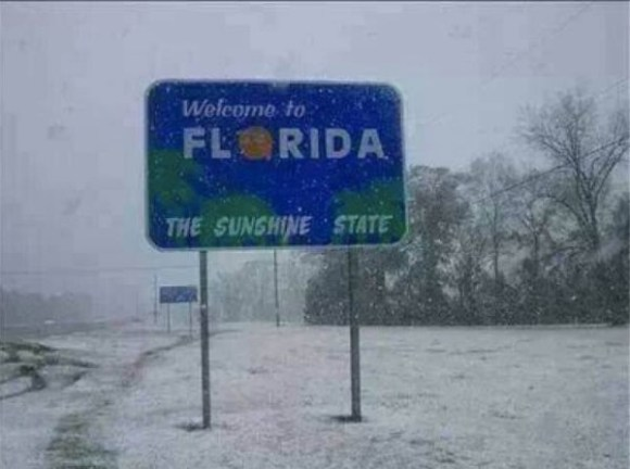 Florida Ice copy