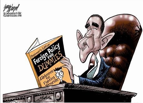 Obama for Dummies copy
