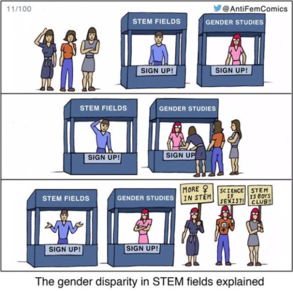 STEM disparity copy