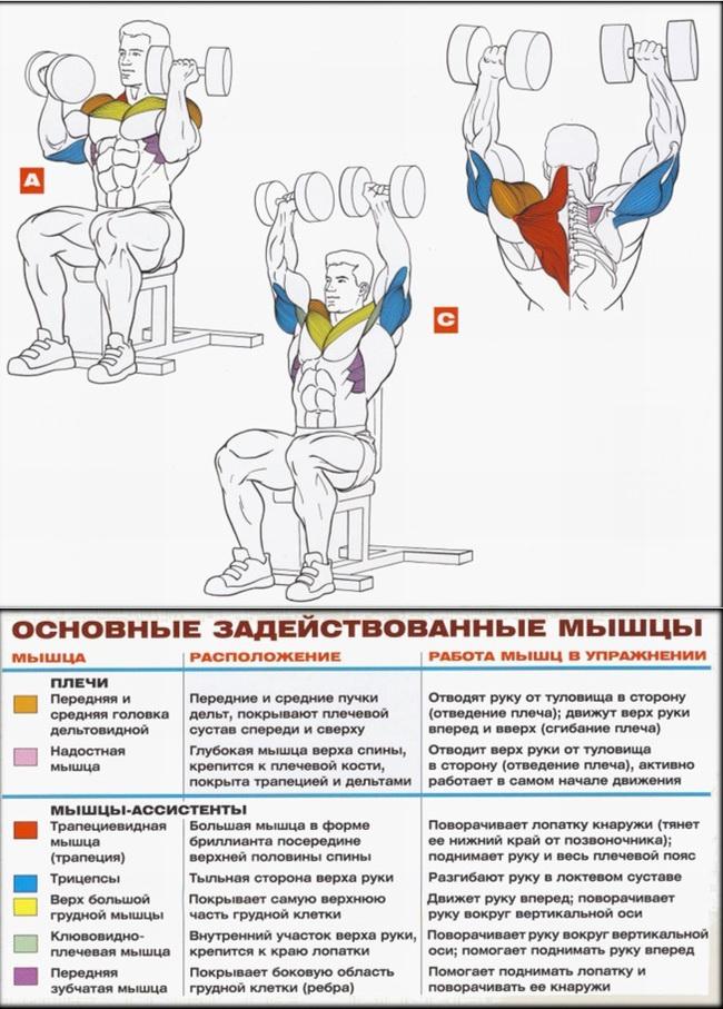 artroză balsam cum să tratezi coxartroza genunchiului