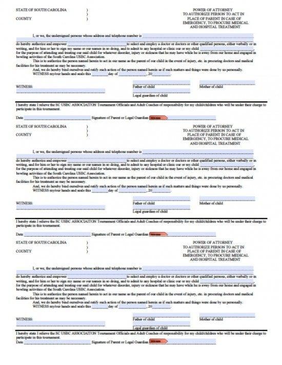 South Carolina Minor Child Power of Attorney Form