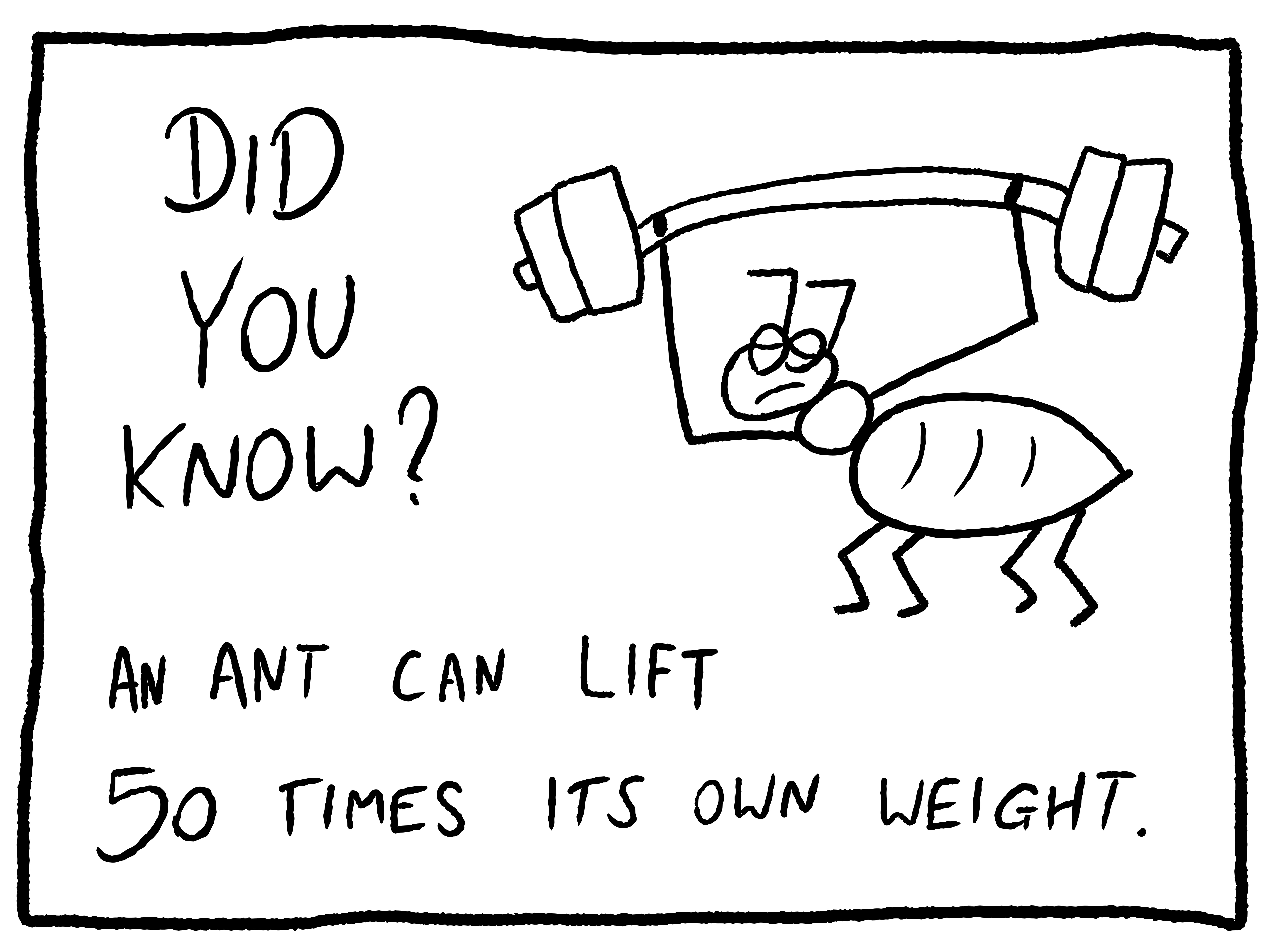 Facts About Ants: 10 Interesting (and Crazy) Facts