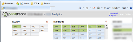 Pivotstream PowerPivot Report Page Zoomed