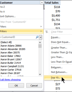 The top  value filter in pivots get to know it does amazing things also displaying bottom and  call others   powerpivotpro rh