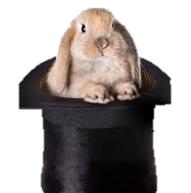 ending bunny