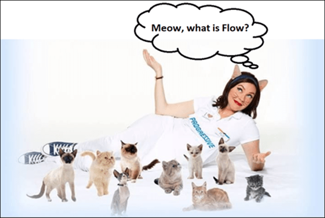 Meow, What is Flow?