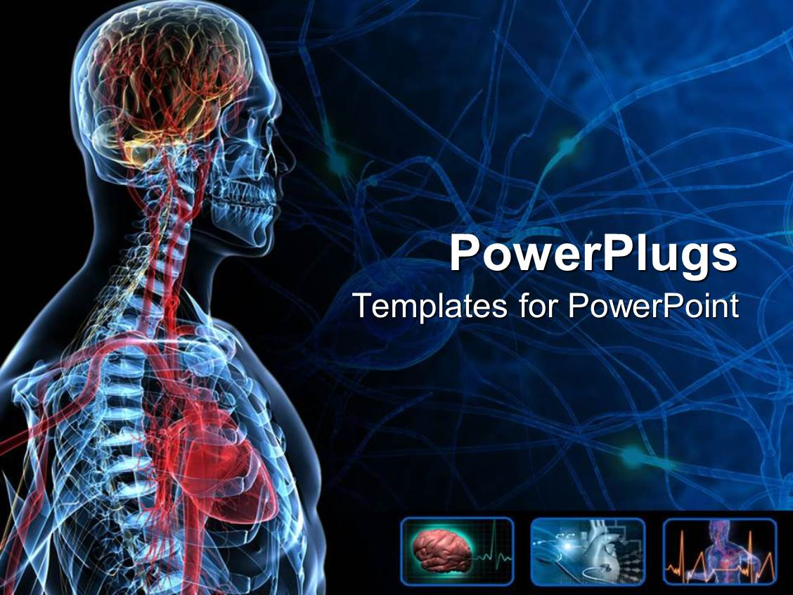 Powerpoint Template The Anatomy Of A Human With Bluish