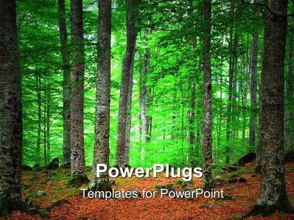 powerpoint template landscape