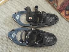 show-shoes