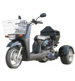 pro ice bear mini cruzzer 49cc trike scooter fully automatic transmission air cooled  [ 1138 x 842 Pixel ]