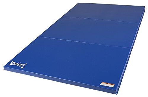 Norberts-Athletic-Products-LPB-416-Gymnastics-Fundamental-Low-P-Bars-0-0