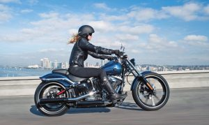 Polk data shows that Harley-Davidson has gained double-digit market share from 2008-12 within important demographic segments.