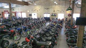 0113Focus-Bessers bikes b