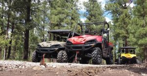 Massimo Motors retails some of its products at Tractor Supply Company stores located in 48 states. The rest of the company's machines — 11 UTVs and two ATV models — are available at the company's growing dealer base.