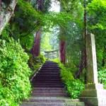 日光東照宮パワースポットの属性・効果とオススメ場所10選