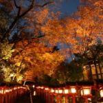 貴船神社の紅葉ライトアップ!もみじ灯篭の時間や期間についても
